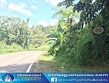 BO GUAVATE - CAYEY - TERRENO 544.5   Bienes Raíces > Residencial > Terrenos > Solares   Puerto Rico > Cayey