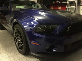 Shelby 2013