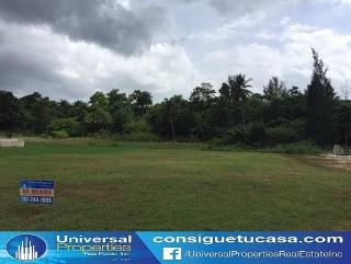 Urb Hacienda Terrazal - Manati - Gran Oportunidad - Llame Hoy