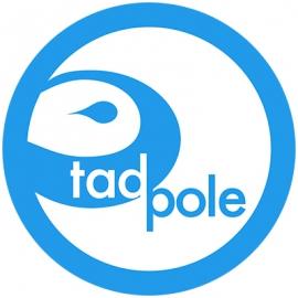 Tadpole in Boston MA