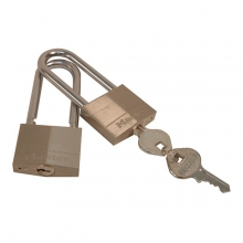 Bear-Proof Lock 2-Pack in San Marcos, TX