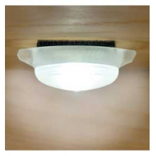 DomeLit Light - White LED