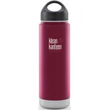 20 oz Wide Mouth Loop Cap Insulated Bottle - Brushed Stainless by Klean Kanteen
