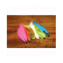 Bucktail Fluorescent Combo in Colorado Springs, CO