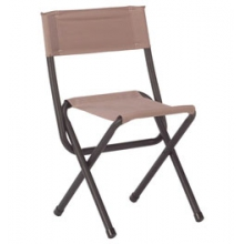 Woodsman II Chair - Tan by Coleman in Livermore CA