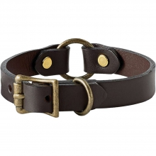 Puppy Collar