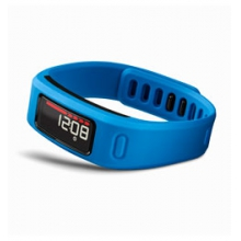 vivoFit Fitness Band in Northfield, NJ