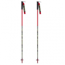 Whip Ski Poles in Fairbanks, AK