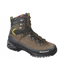 Appalachian 3S GTX 10::Dark Brown/Cadmium