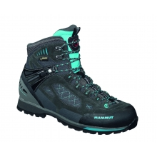 - Ridge High GTX Wmns - 9.5 - Graphite Light Pacific
