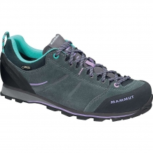 Women's Wall Guide Low GTX Shoe