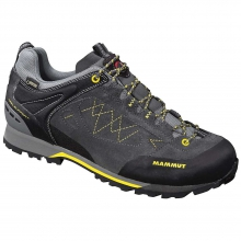 Men's Ridge Low GTX Shoe by Mammut