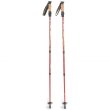 Pyrite 7075 Trekking Pole - Pair by Mountainsmith