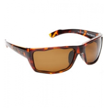 Wazee Polarized Sunglasses in Pocatello, ID