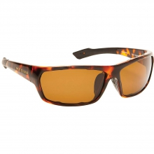 Apex Sunglasses by Native Eyewear