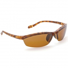 Dash SS Polarized Sunglasses