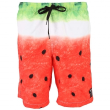 Hot Tub Boardshorts - Men's by Neff
