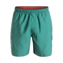 Mens Balance Lightweight Dynasuede Boardshorts - Sale Agate Green by Quiksilver