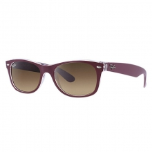 New Wayfarer-Brown/Transparent Sunglasses