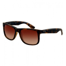 Justin 4165 Sunglasses by Ray Ban