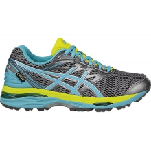 Women's GEL-Cumulus 18 G-TX by Asics in Fairbanks Ak