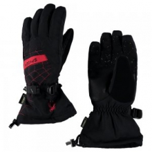 Overweb GORE-TEX Glove Men's, Black/Polar, L by Spyder