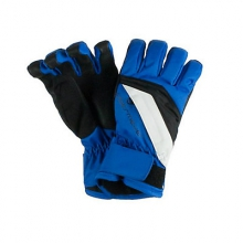 Alpine Teen Boys Gloves