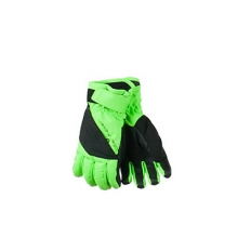 Alpine Kids Gloves