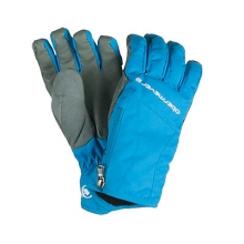 Alpine Womens Gloves