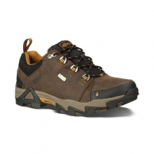 Men's Coburn Low Waterproof Shoes/Sneakers in State College, PA