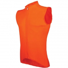 Men's AVIP Light Wind Vest