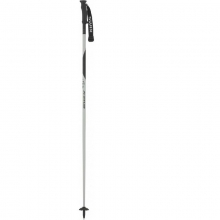 Men's Techlite Performance Aluminum Ski Poles in State College, PA