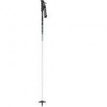 Convict Ski Pole in State College, PA