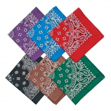 Paisley Bandanas One Size::Assorted Colors by Liberty Mountain