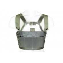 Ten-Speed  M4 Chest Rig by Blue Force Gear