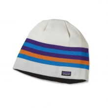 Beanie Hat by Patagonia in Pocatello Id