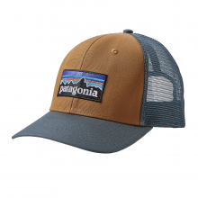 P-6 Logo Trucker Hat by Patagonia in Seattle Wa