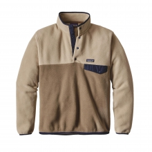 Men's Lightweight Synchilla Snap-T Pullover by Patagonia in East Lansing Mi