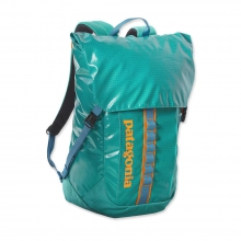 Black Hole Pack 32L by Patagonia in Milwaukee Wi