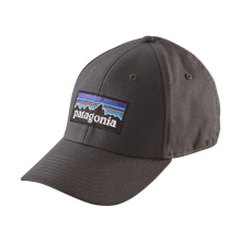 P-6 Logo Stretch Fit Hat by Patagonia in Delafield Wi