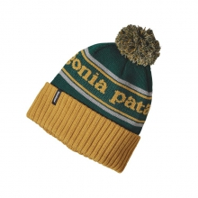 Powder Town Beanie by Patagonia in Seattle Wa