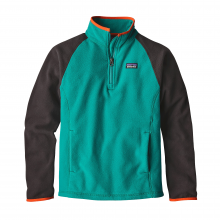Boys' Micro D 1/4 Zip by Patagonia