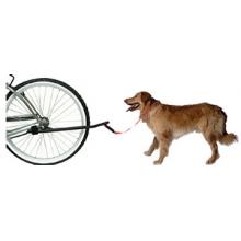 Dog Leash by Sunlite
