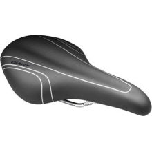 Flow 2 Saddle - Women's by Giant