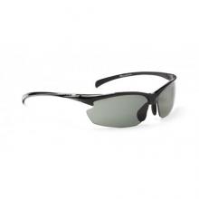 Omnium Polarized Sunglasses by Optic Nerve
