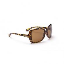 Aprhodite Sunglasses - Polarized Brown by Optic Nerve