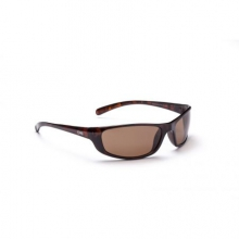 Backwoods Sunglasses - Polarized