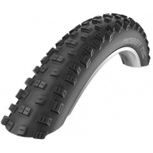 Nobby Nic Evolution Line Tire in Chapel Hill, NC