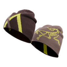 Arc Mountain Toque by Arc'teryx in Ann Arbor Mi