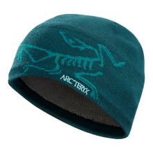 Bird Head Toque by Arc'teryx in Lexington Va